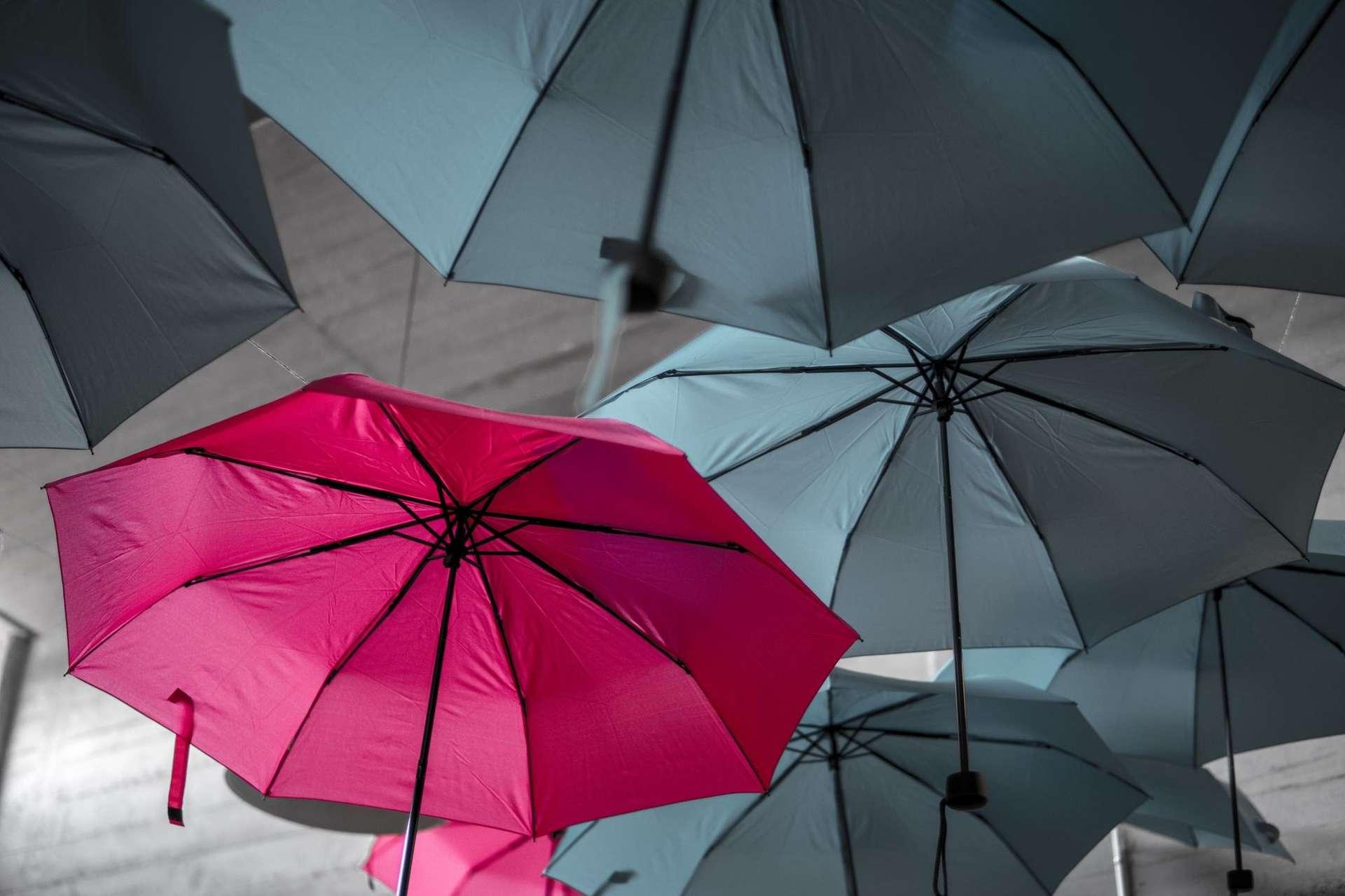 Grey umbrellas and one red umbrella
