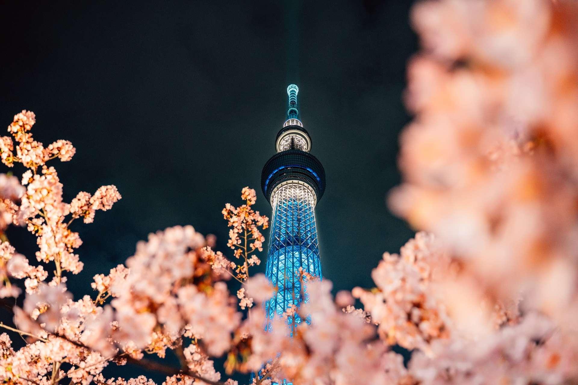 Baillie Gifford Japan Trust